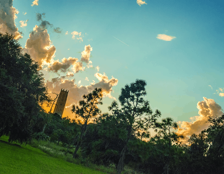 Bok Tower photo by Saddi Khali