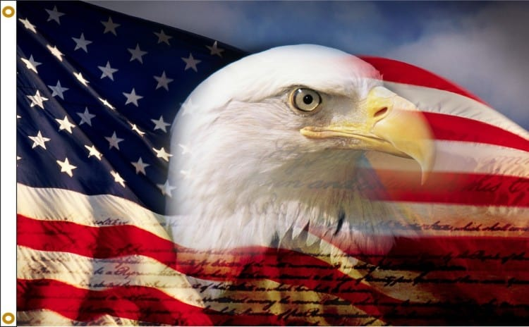 American Flag with head of a Bald Eagle