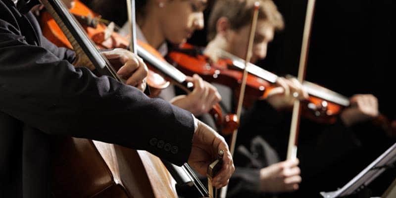 cellist, violist, 2 violinists
