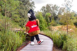 Wawa duck at Bok Tower Gardens